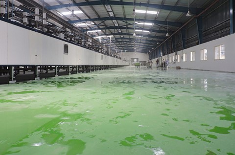 Britannia Takes the Biscuit with Flowcrete Flooring